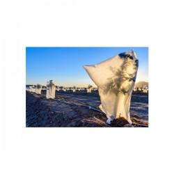 BR GARDEN - Zaštitni pokrivač za biljke - 1,4 x 2m